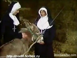 Nun tries zoophilia porn when all alone with her donkey
