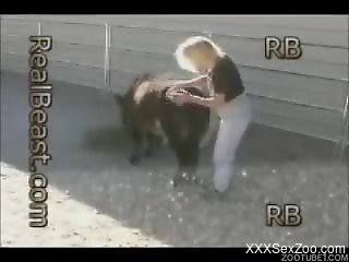 Impressive cutie is playing with her lovely cute pony