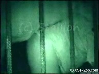 Horse owning lustful female in cell at midnight